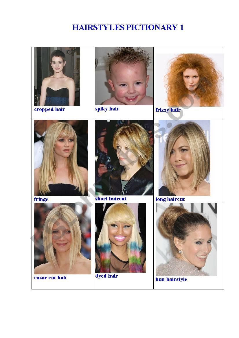 HAIRSTYLES PICTIONARY 1 worksheet