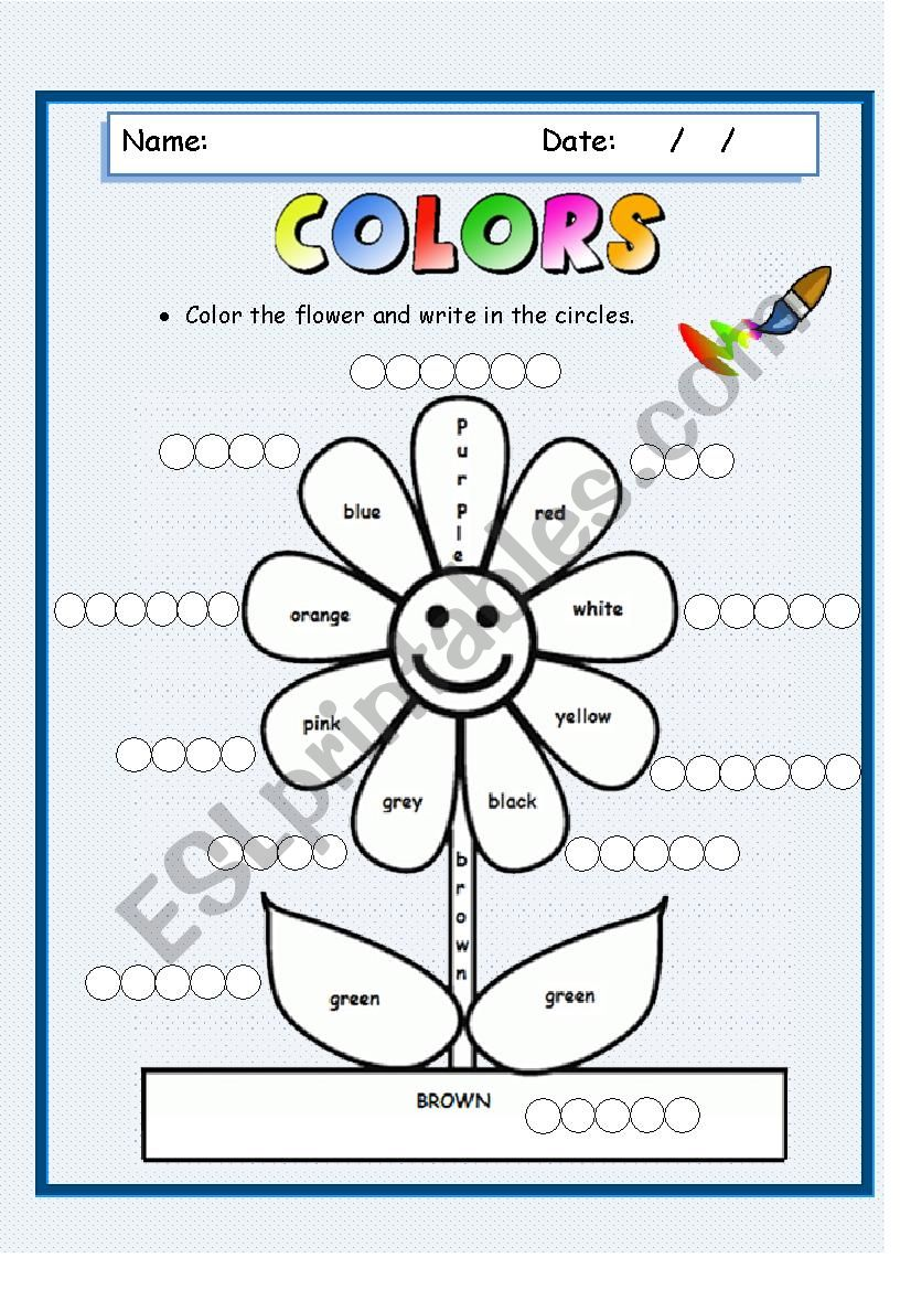 Color the flower worksheet