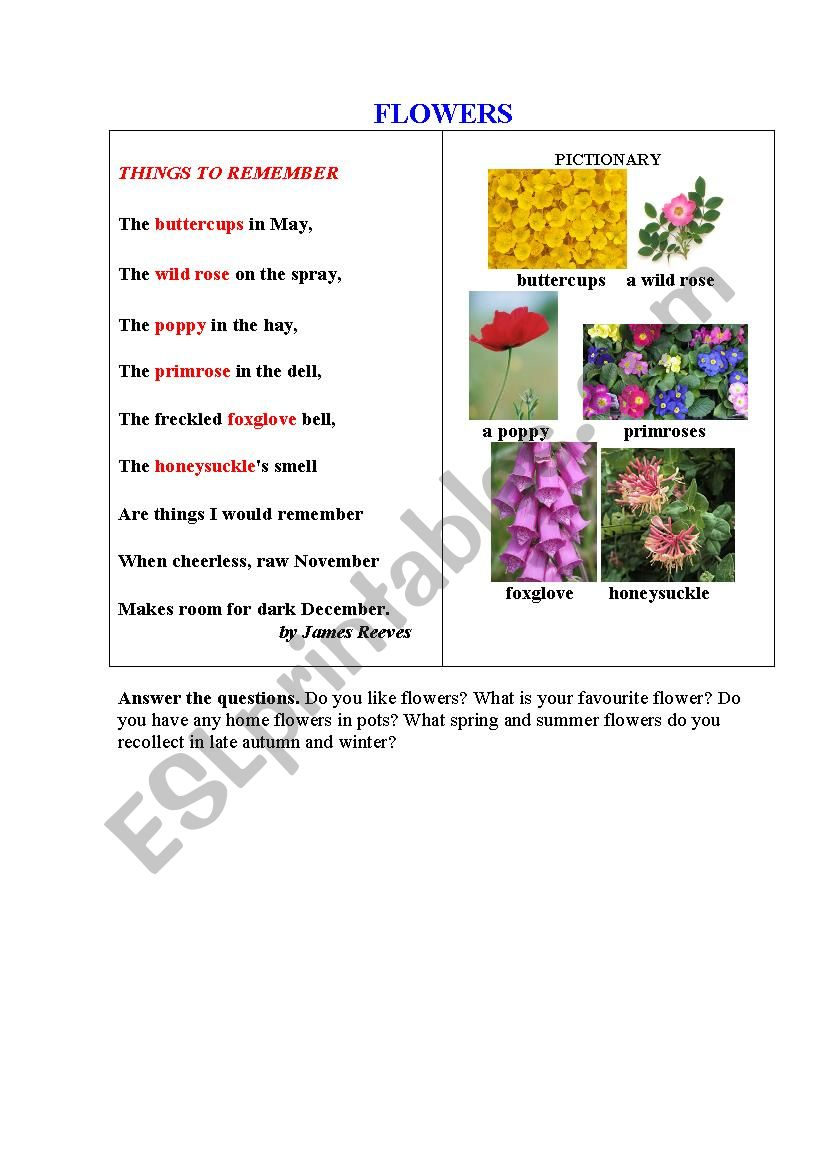 Flowers A Poem A Pictionary Questions To Discuss Esl