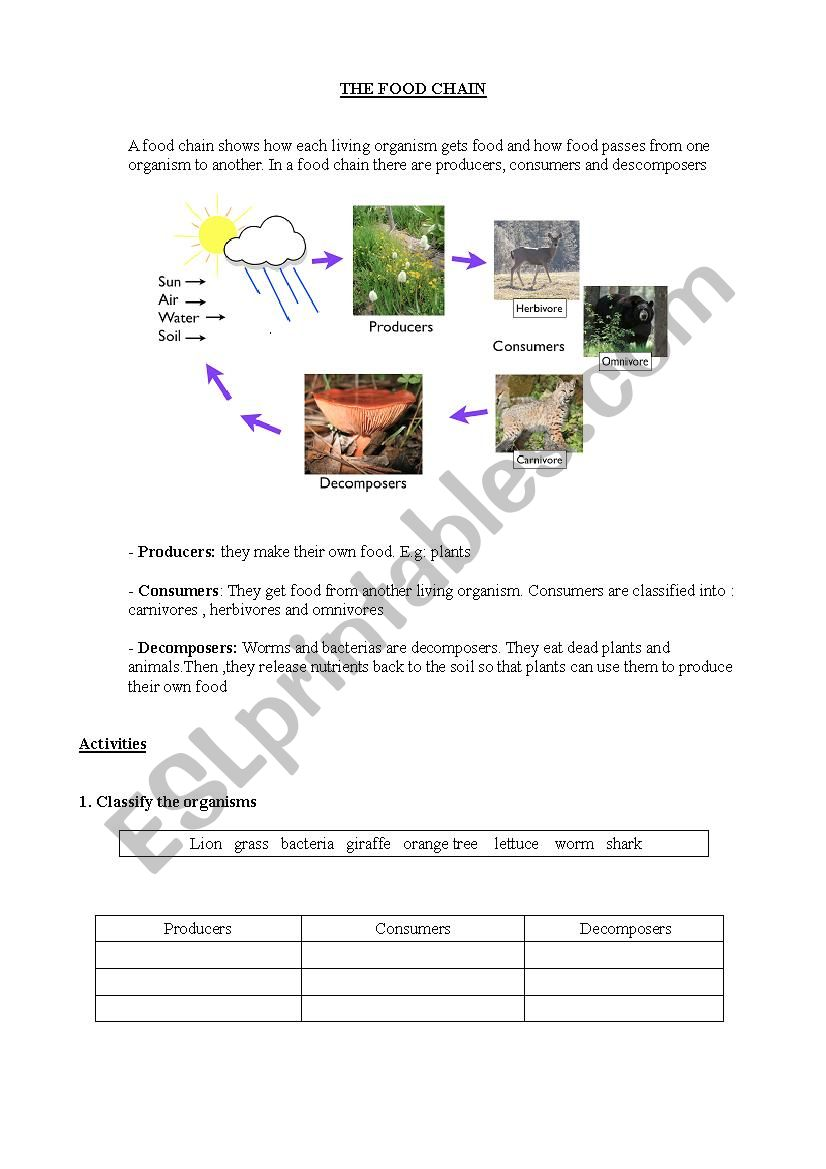 THE FOOD CHAIN - ESL worksheet by JoseKaram