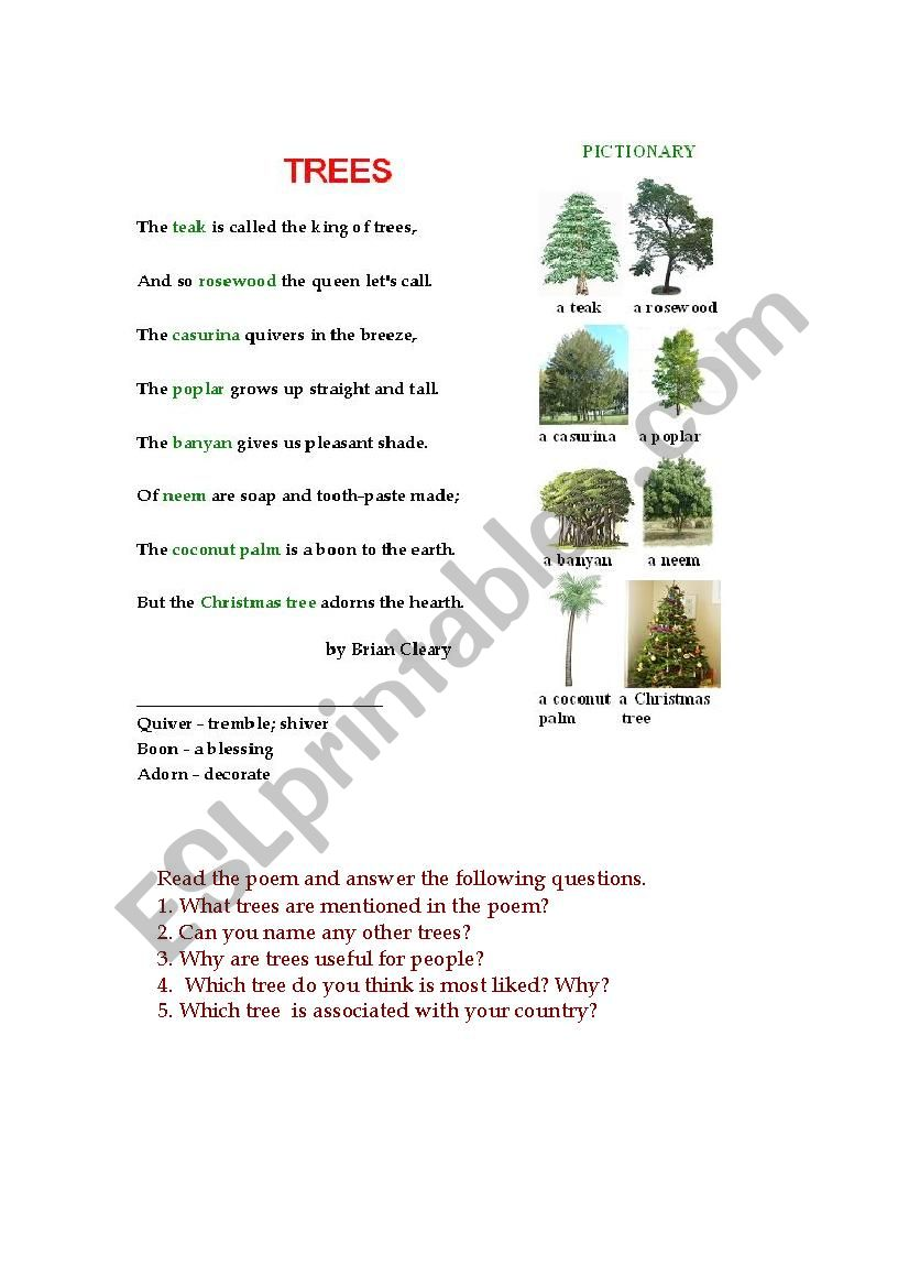 TREES (a poem + a pictionary + questions)