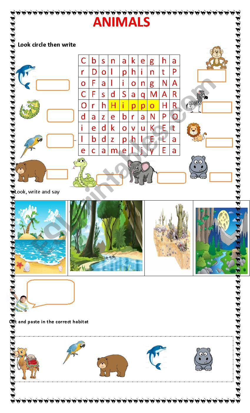 animals and their habitat esl worksheet by stessenspaola. Black Bedroom Furniture Sets. Home Design Ideas