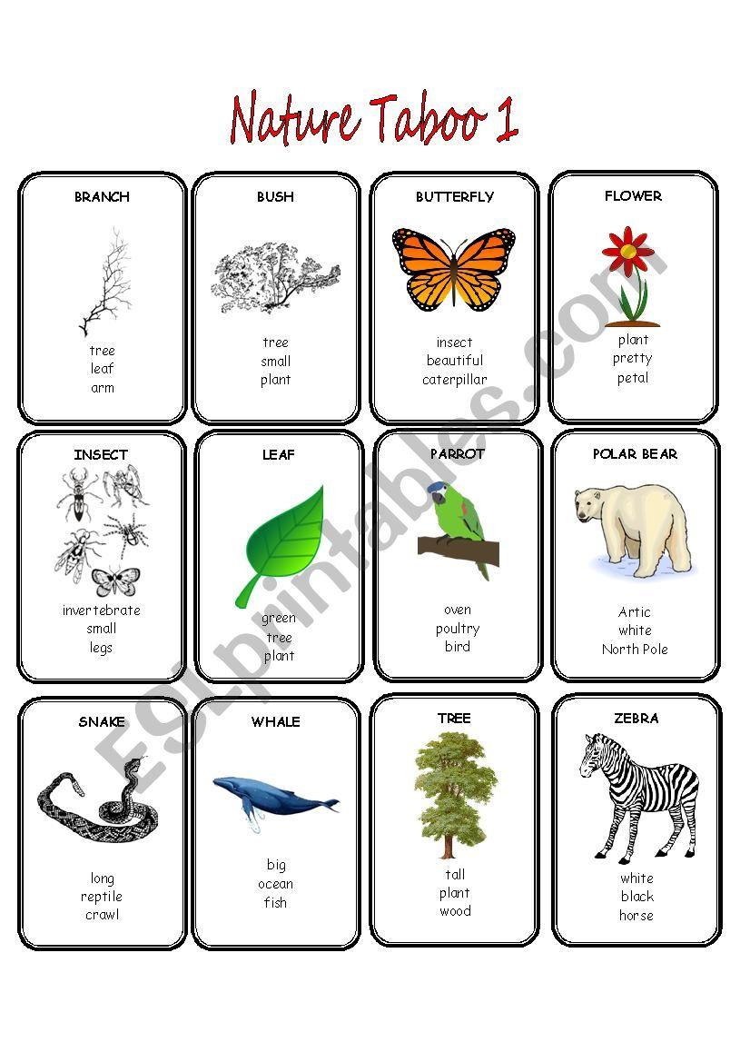 Nature Taboo 1/2 worksheet