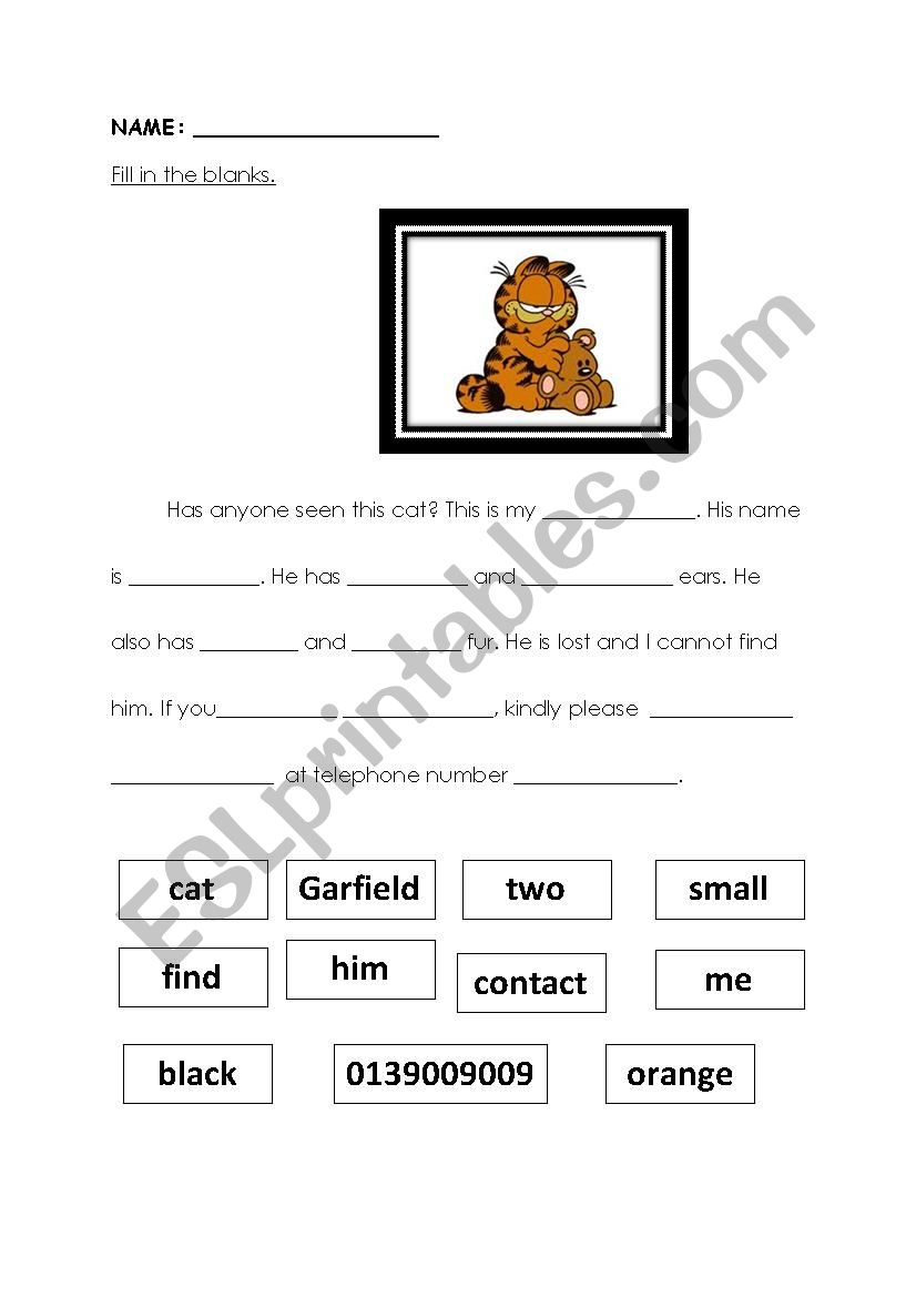My Missing Pet. worksheet