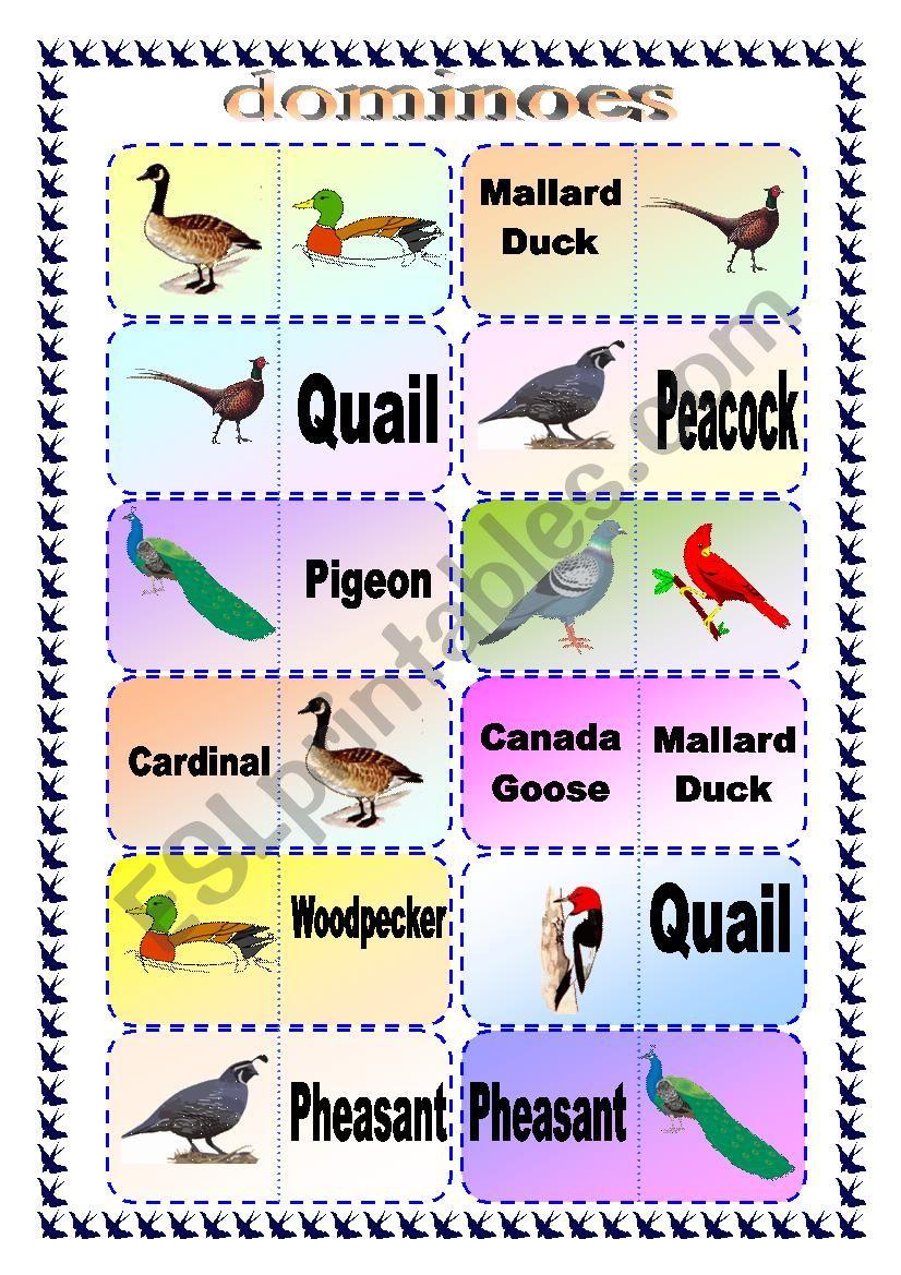 Bird Breed Domino Game worksheet