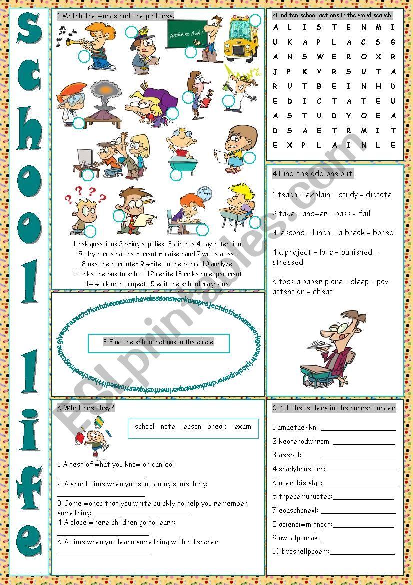 School Life Vocabulary Exercises
