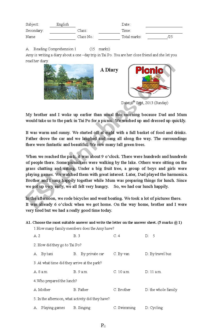 reading test with some grammar items - ESL worksheet by