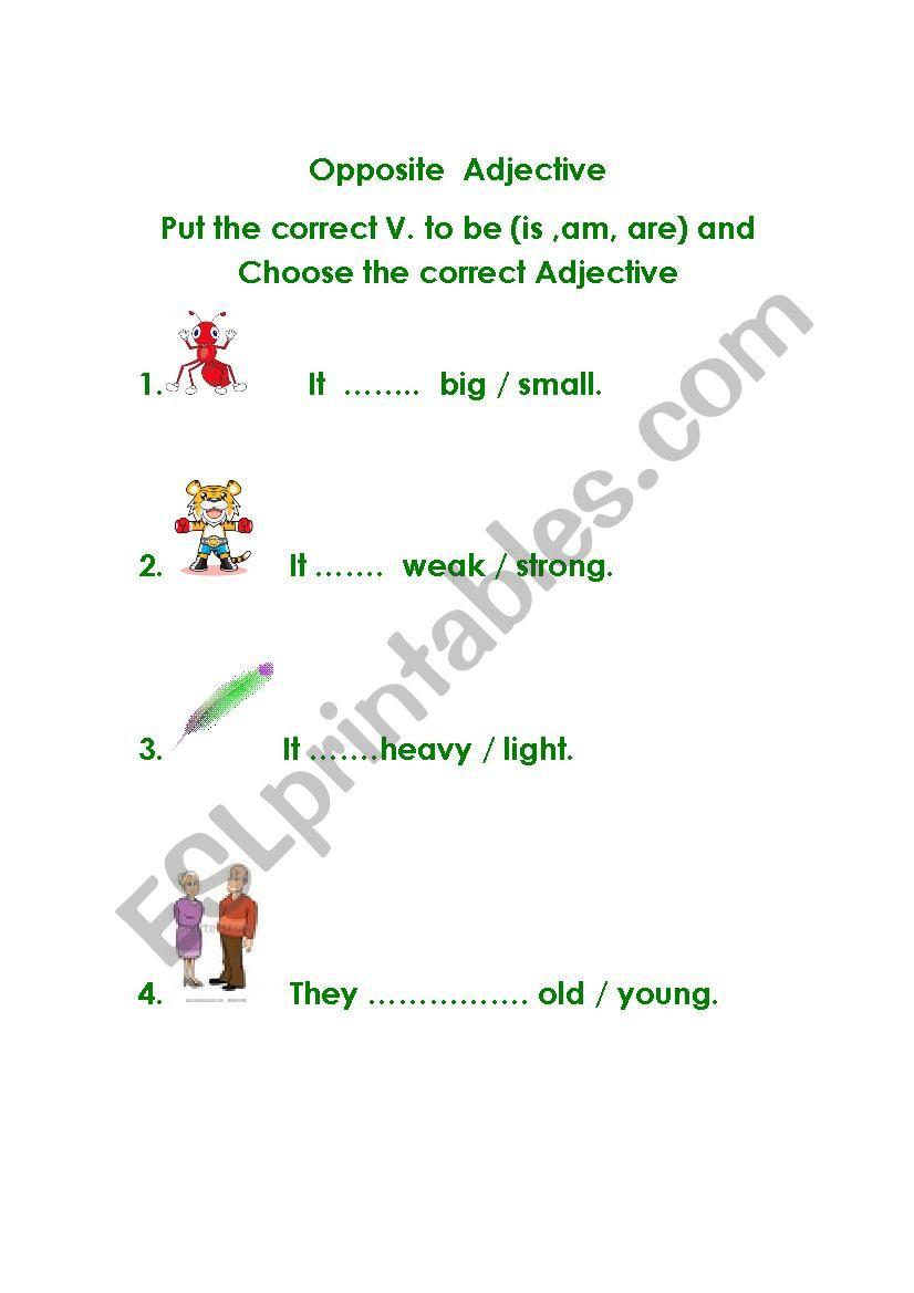 Opposite Adjective worksheet