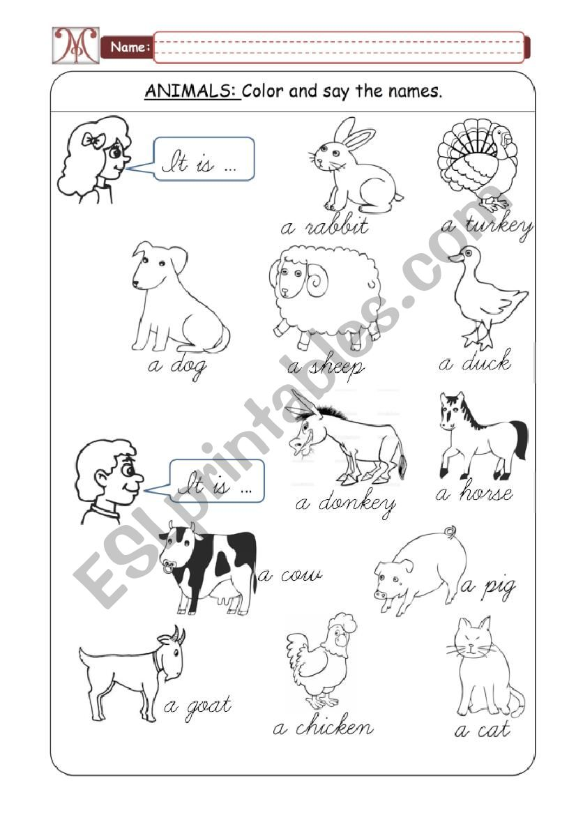 Domestic Animals - Part 01 worksheet