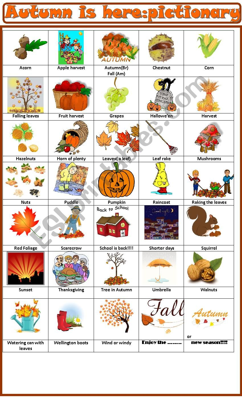 Autumn is here: pictionary worksheet
