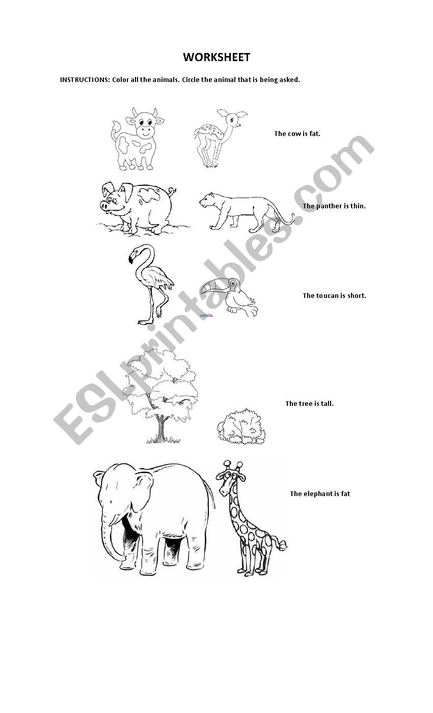 Animals and Adjectives worksheet
