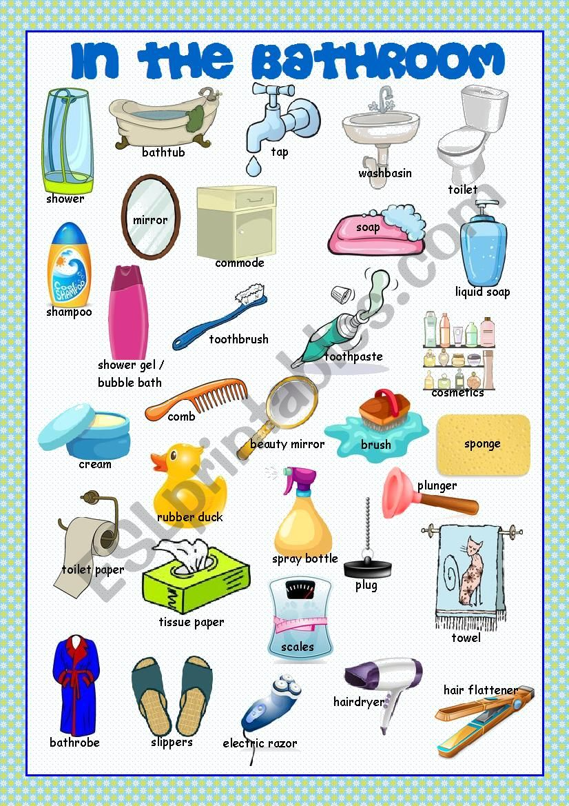 Bathroom Picture Dictionary worksheet