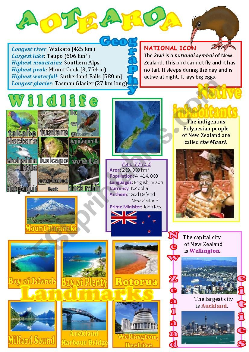 New Zealand wall poster worksheet