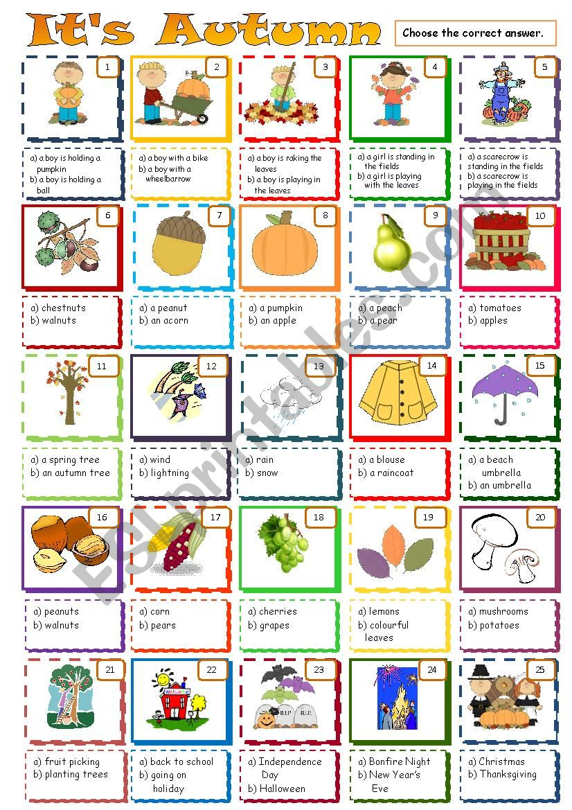 Autumn - Multiple Choice worksheet
