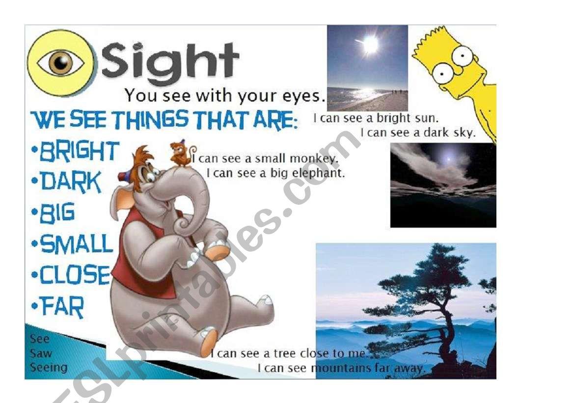 Five senses - Sight 2/5 worksheet