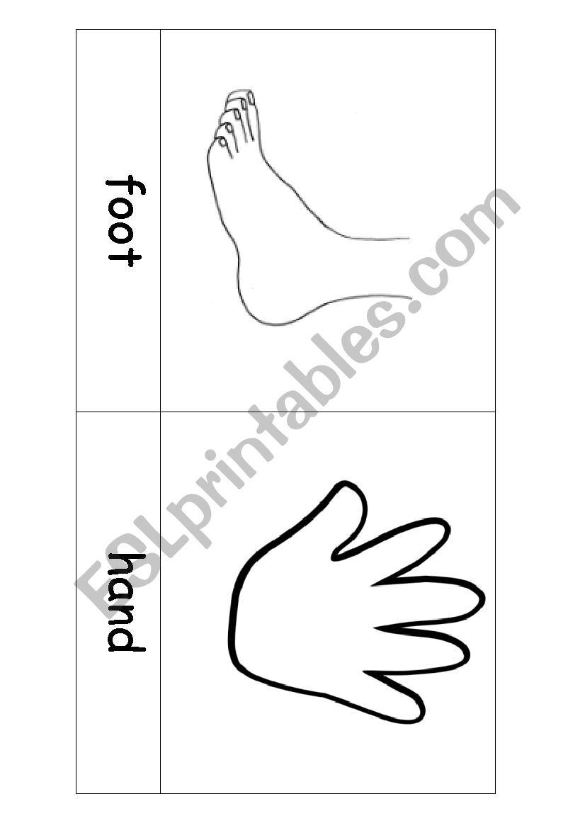 Body parts flashcards BW worksheet