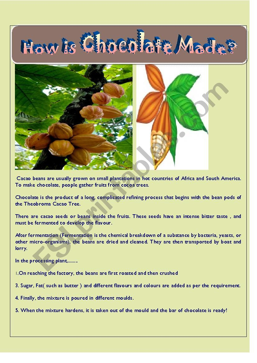 How Chocolate is Made   How Chocalate is Made   Reading furthermore Take  Make and Get   dependent preposition worksheet worksheet moreover Chocolate Fever  Printable Literacy Unit further  also  together with  additionally  besides  moreover  further Plurals Worksheets Singular Plural Nouns Kindergarten Worksheet Free likewise Chocolate   ESL worksheet by agathachristiefan besides Christmas Recipe Worksheet With CHRISTMAS RECIPE Free ESL Printable furthermore  likewise Quotes as Evidence  1   Worksheet   Education besides Food Label Worksheet Cooking Worksheets For Esl Students Preview En besides . on how chocolate is made worksheet