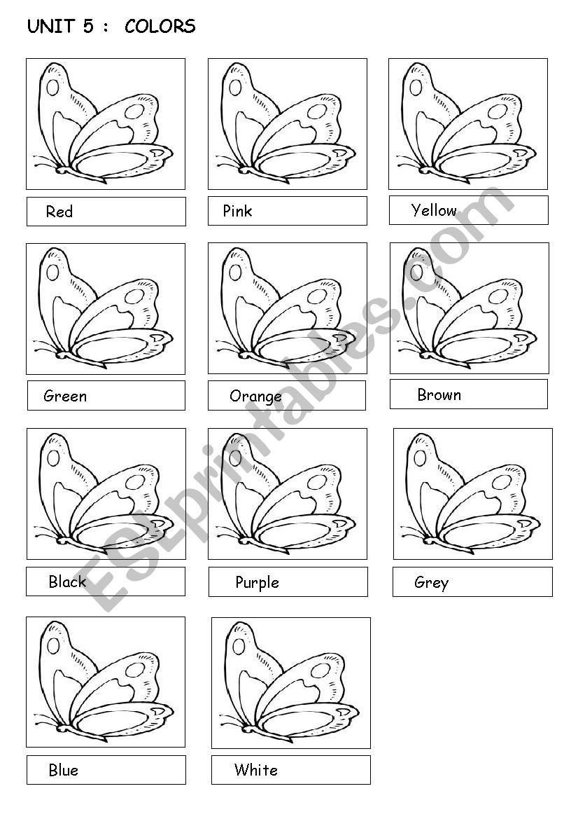color the butterflies worksheet