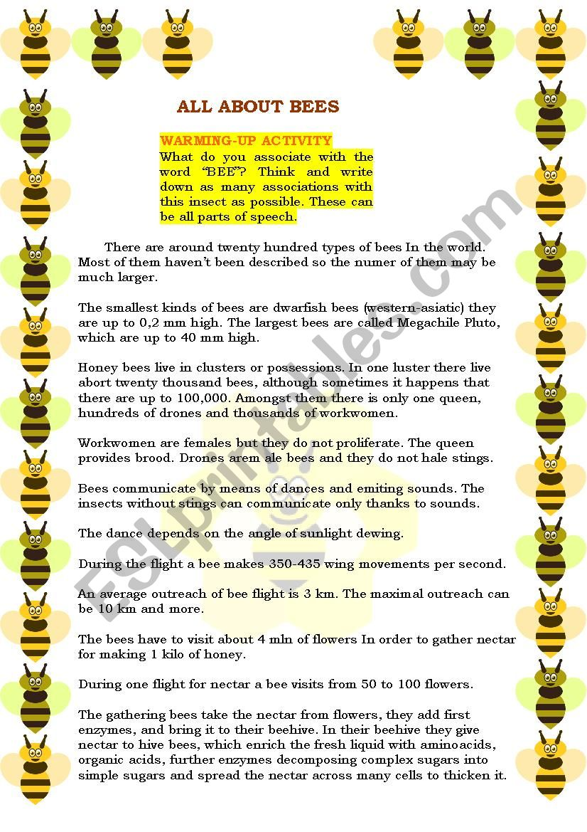 READING - ALL ABOUT BEES! EDITABLE + 3 EXERCISES