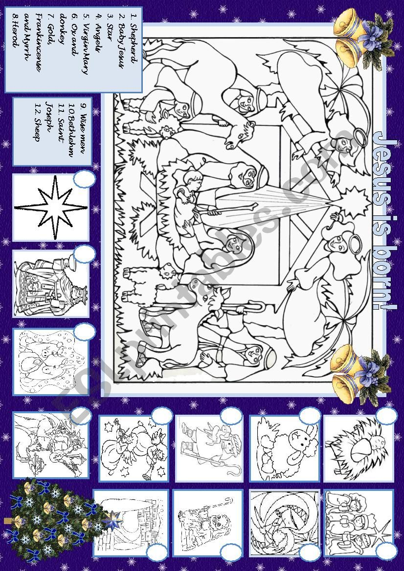 The Baby is born! worksheet