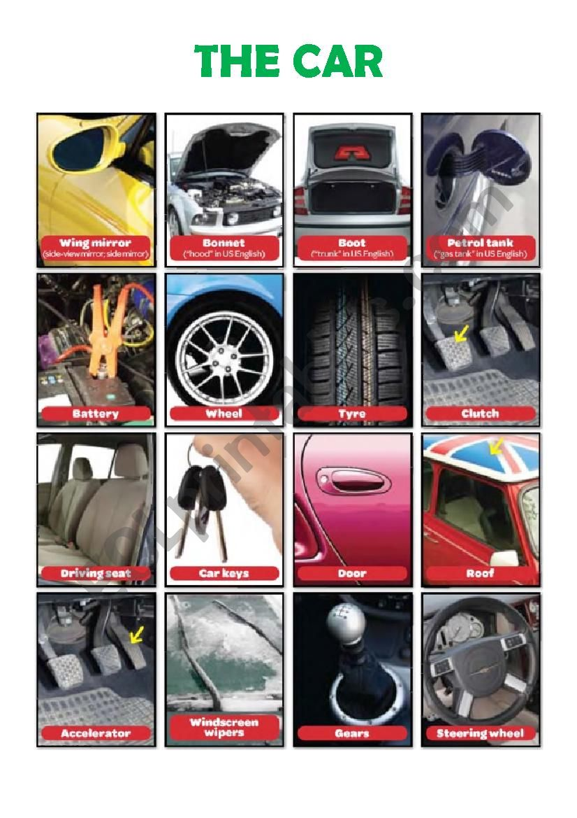 The Car Pic Dictionary worksheet