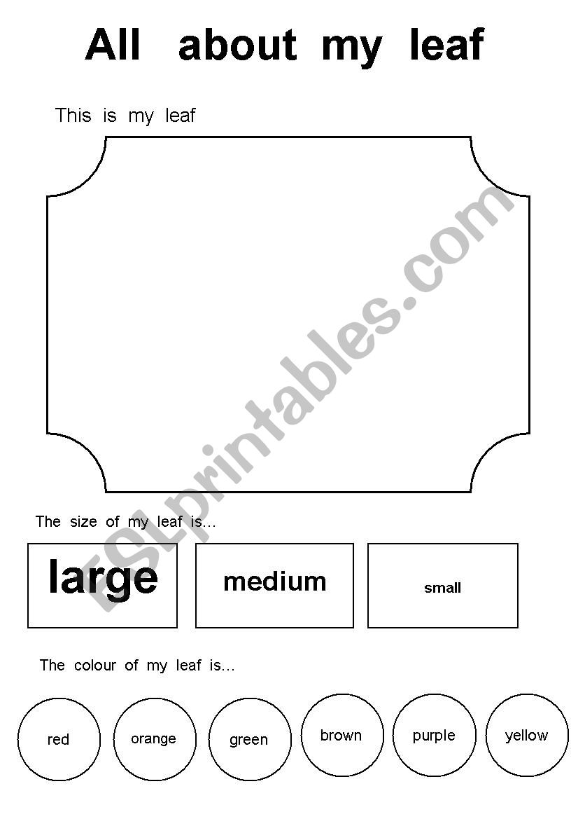 All about my leaf - ESL worksheet by Fossati60