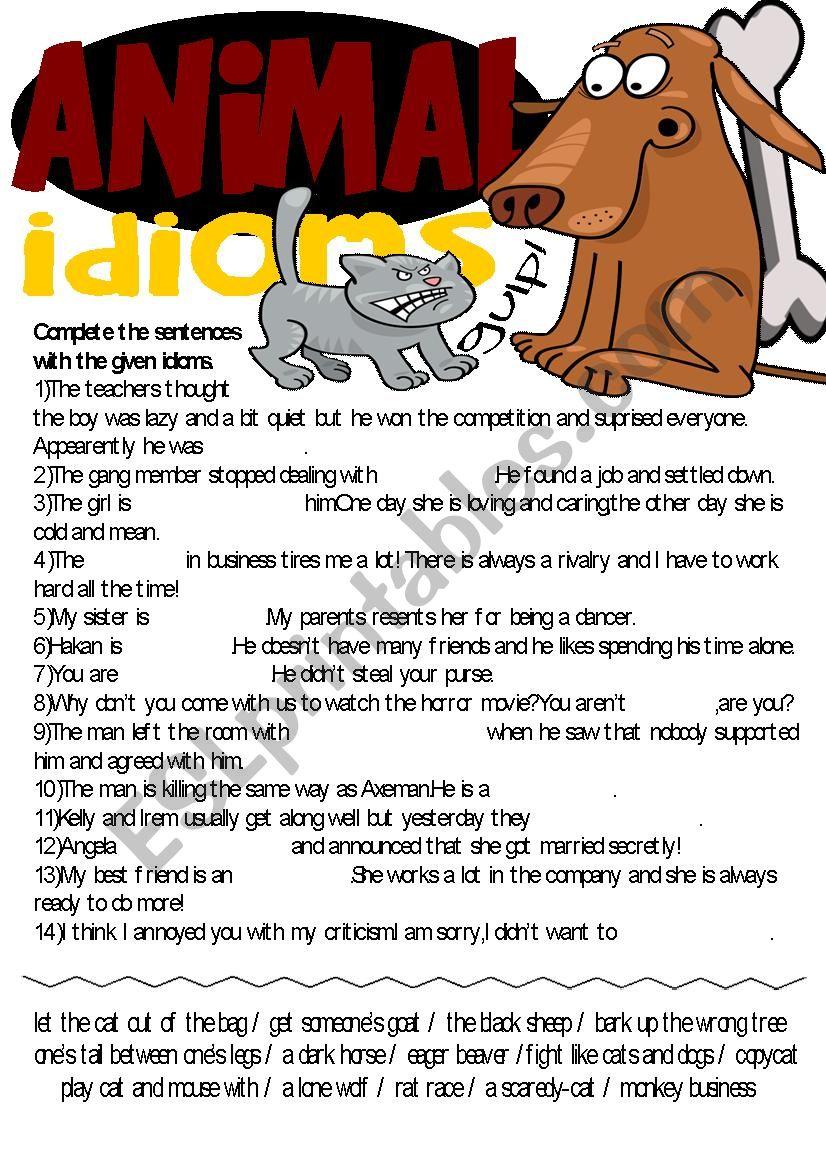 Idioms Series-Animal Idioms Exercise