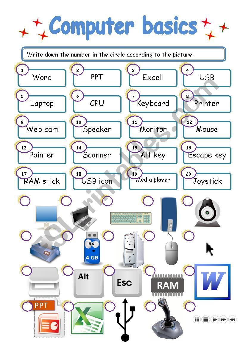 COMPUTER BASICS   ESL worksheet by lorymorei