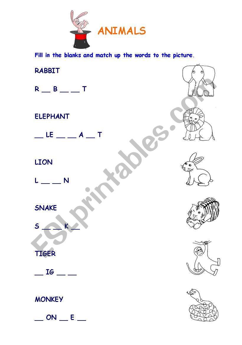 Animals Easy worksheet