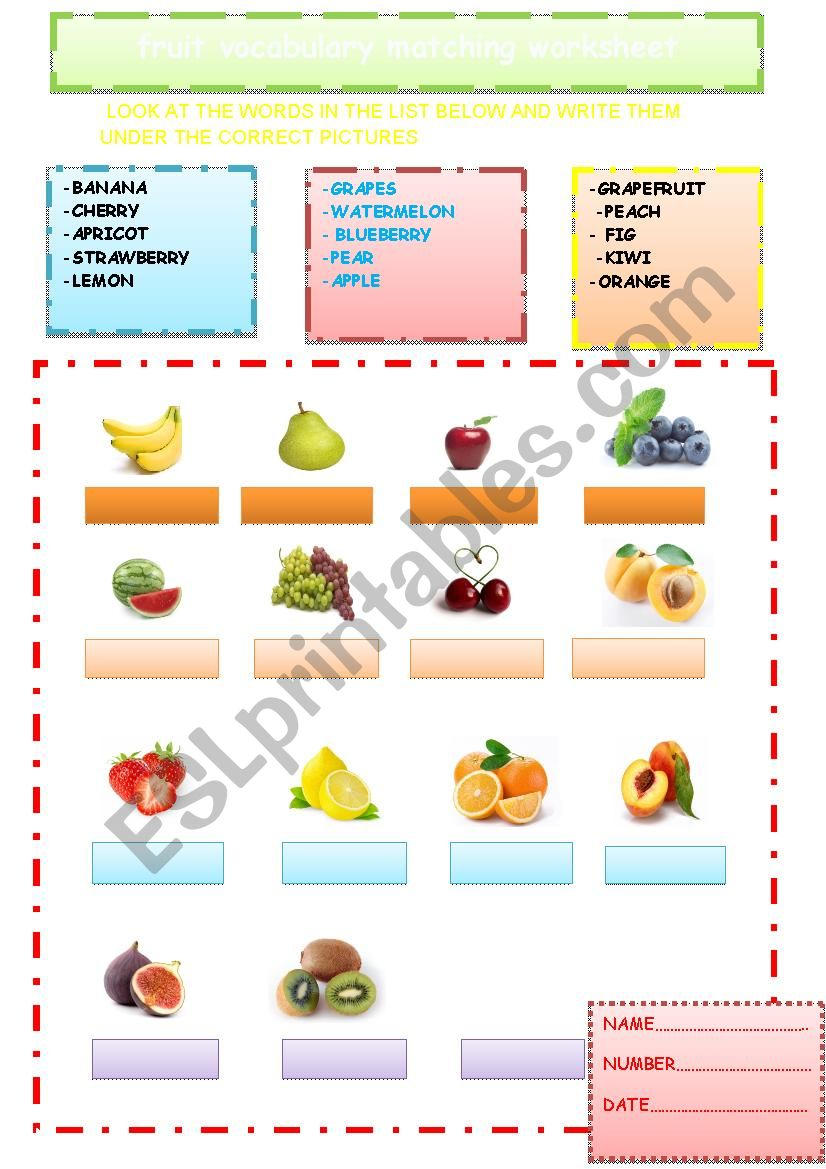 Look At The Words In The List Below And Write Them Under The Correct Pictures Esl Worksheet By Swee D