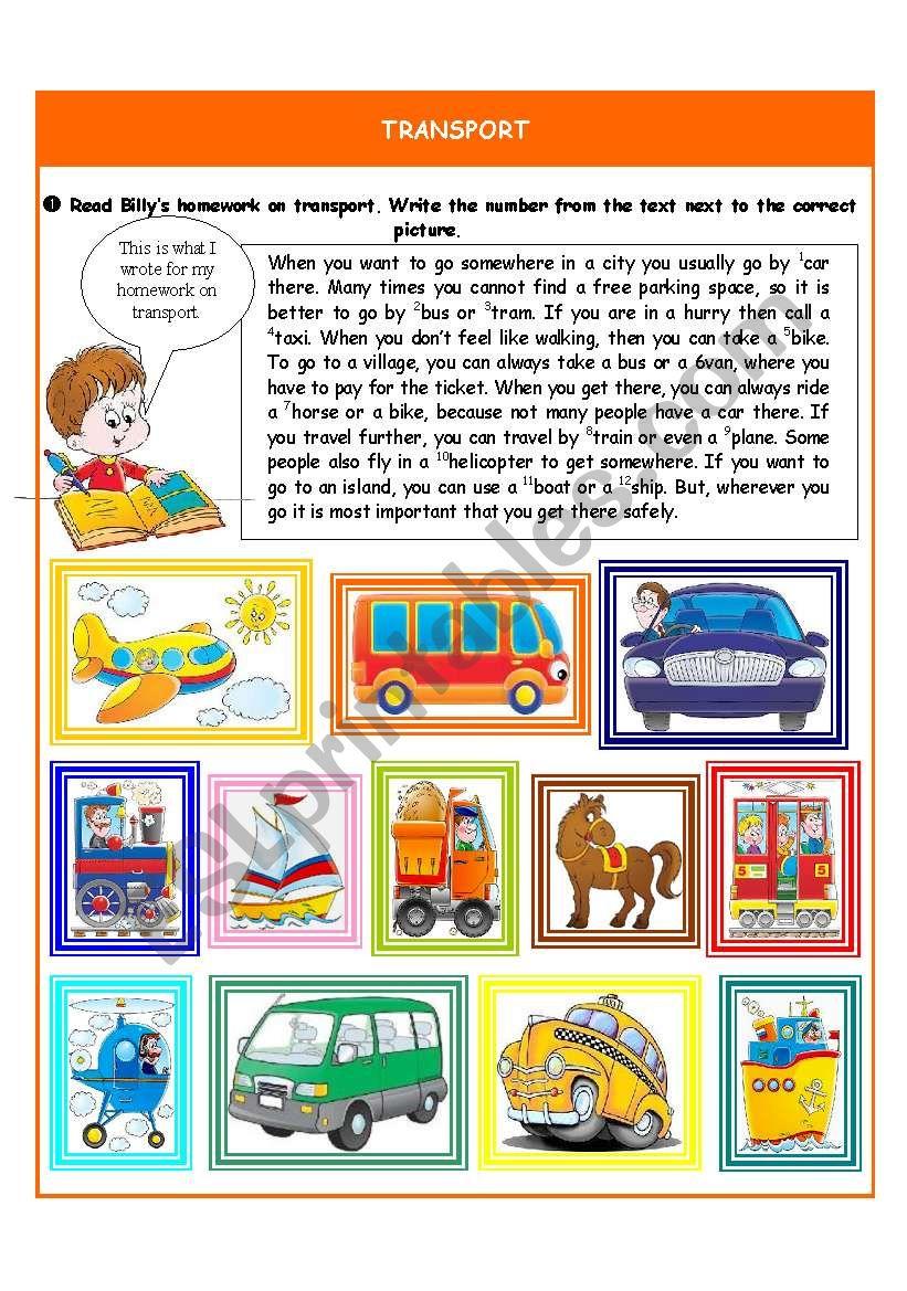 Transport worksheet