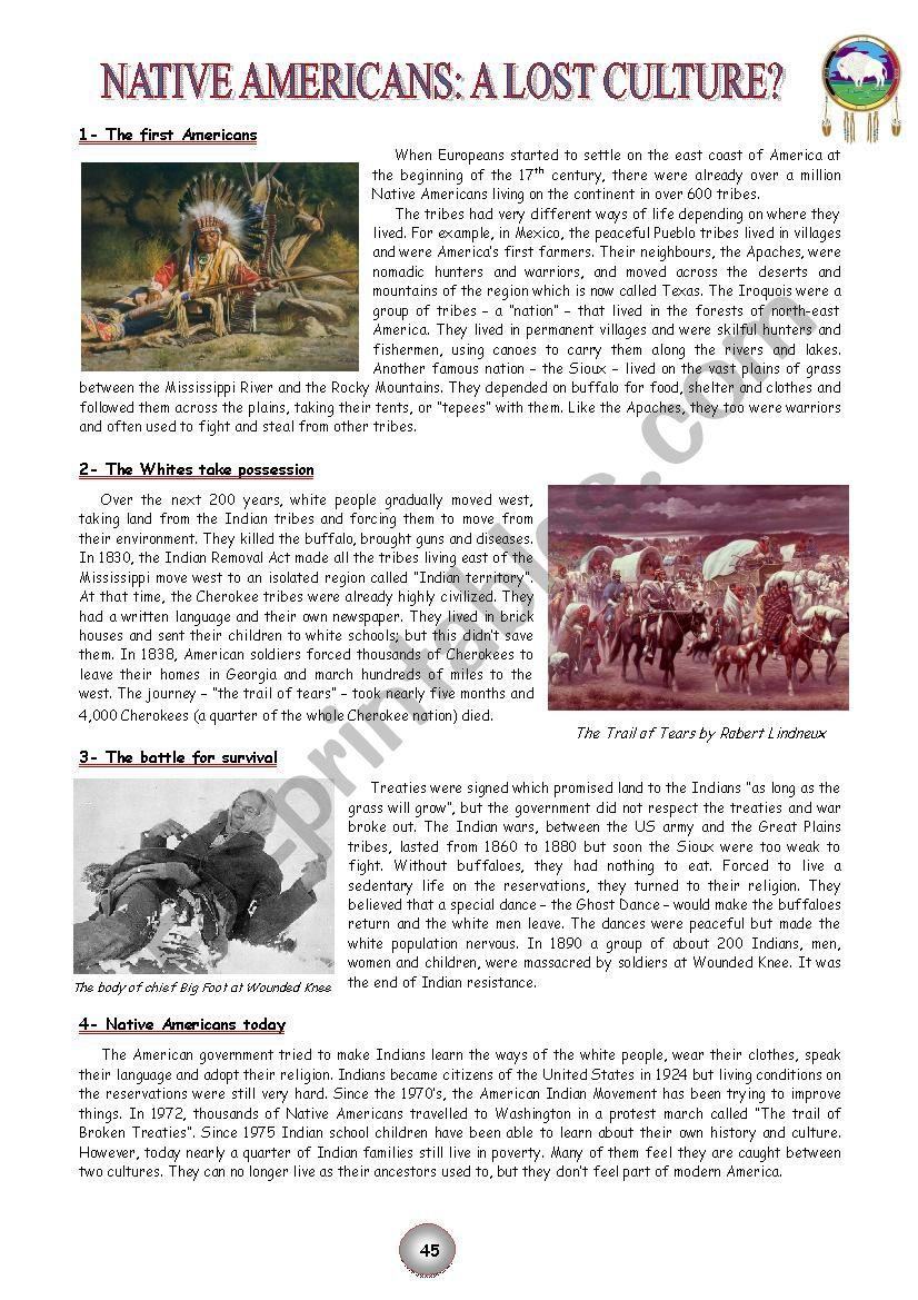 Native Americans: a lost culture