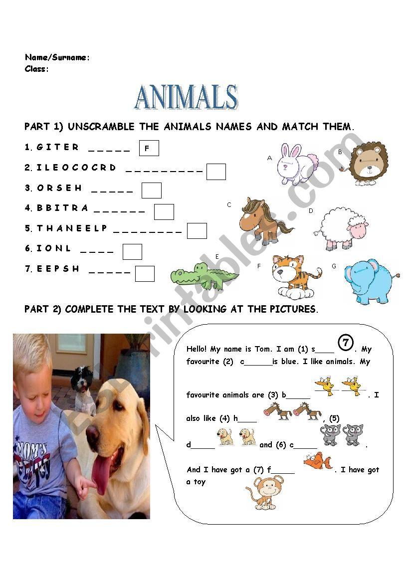 ANIMALS, PETS worksheet