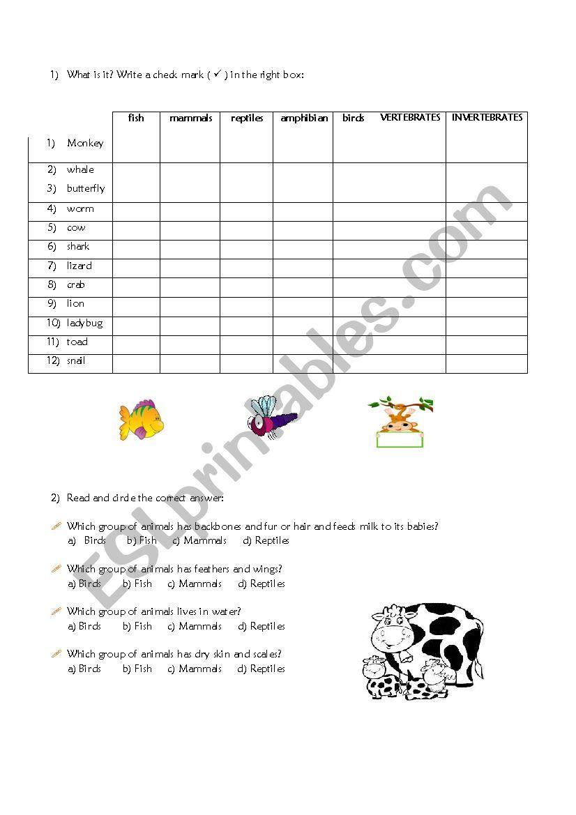 animals groups: mammals/reptiles/amphibians/birds/vertebrates/fish/invertebrates ...