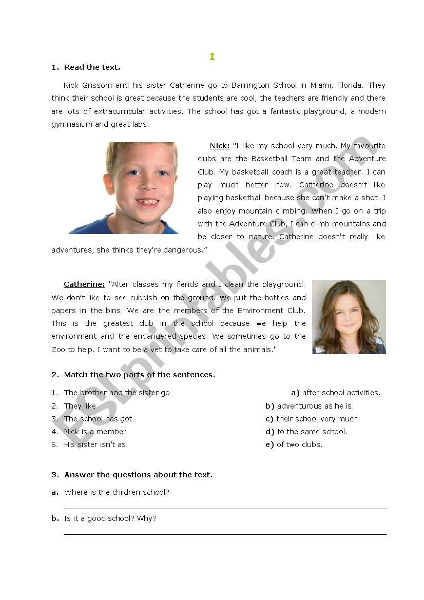 Revision worksheet worksheet