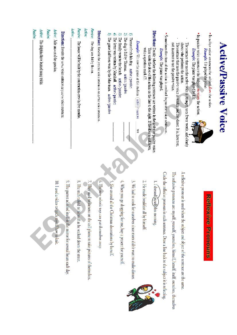 possesive worksheet