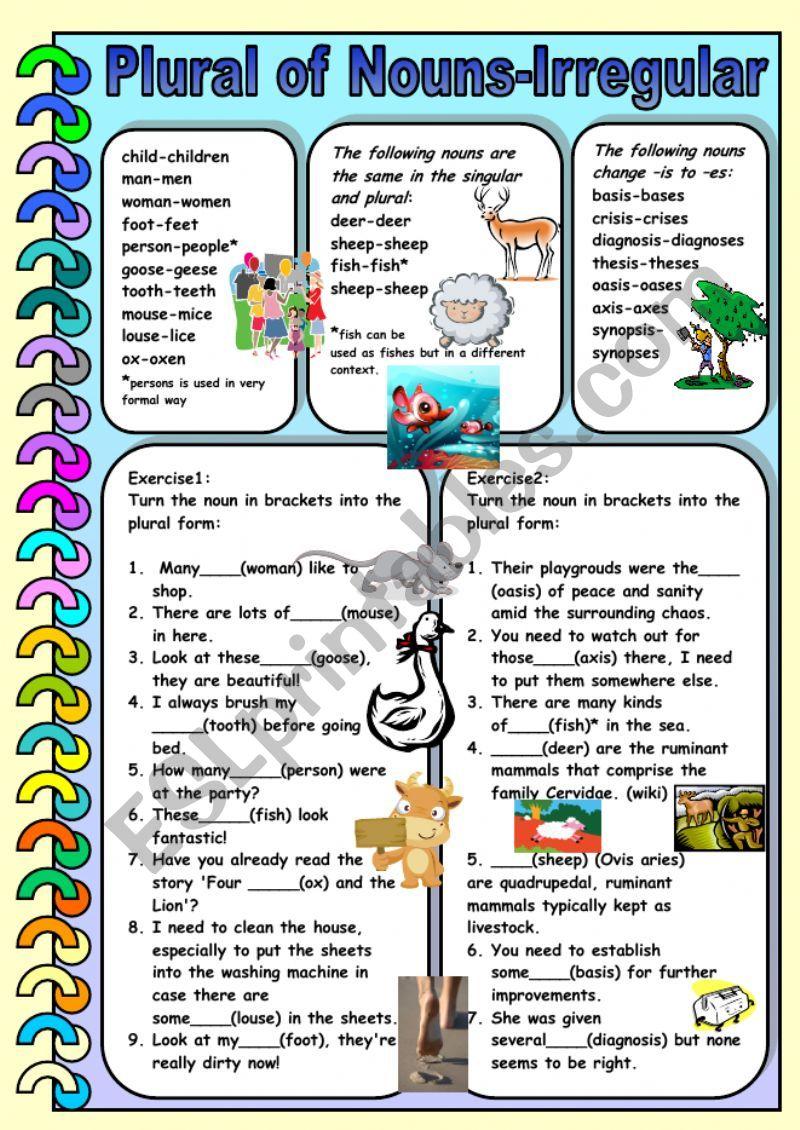 Plural of Nouns- Irregular worksheet