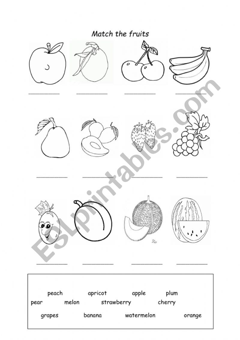 Fruits Worksheet worksheet