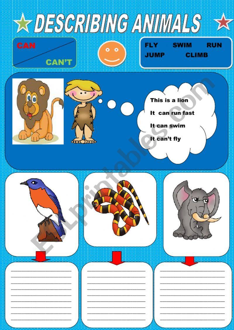 Describing animals worksheet