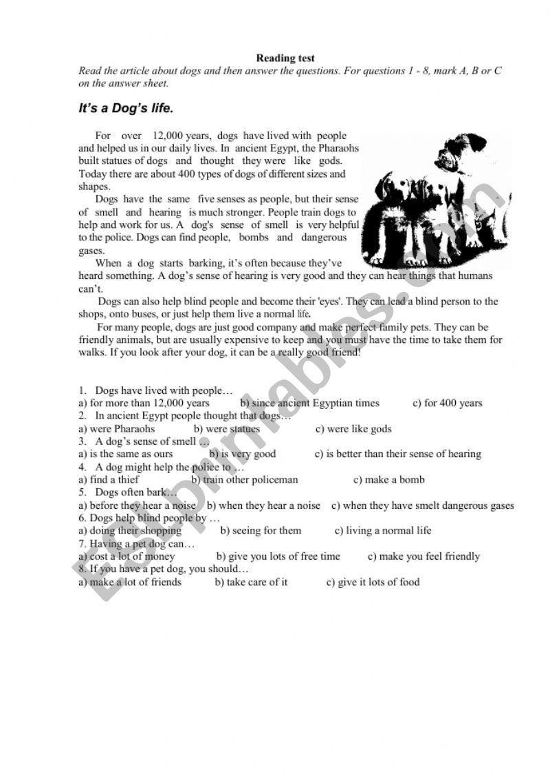 Readind test worksheet