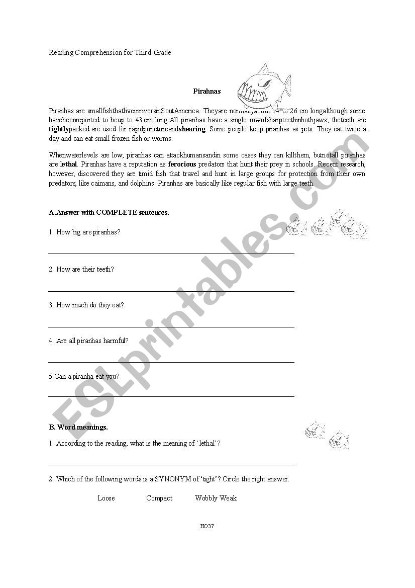 - Reading Comprehension 3rd Grade - Piranhas - ESL Worksheet By Danicr