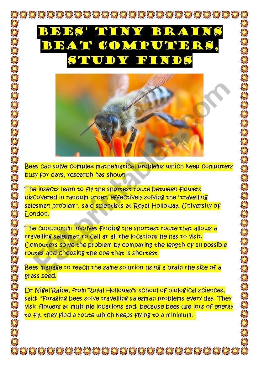 Bees´ brains worksheet