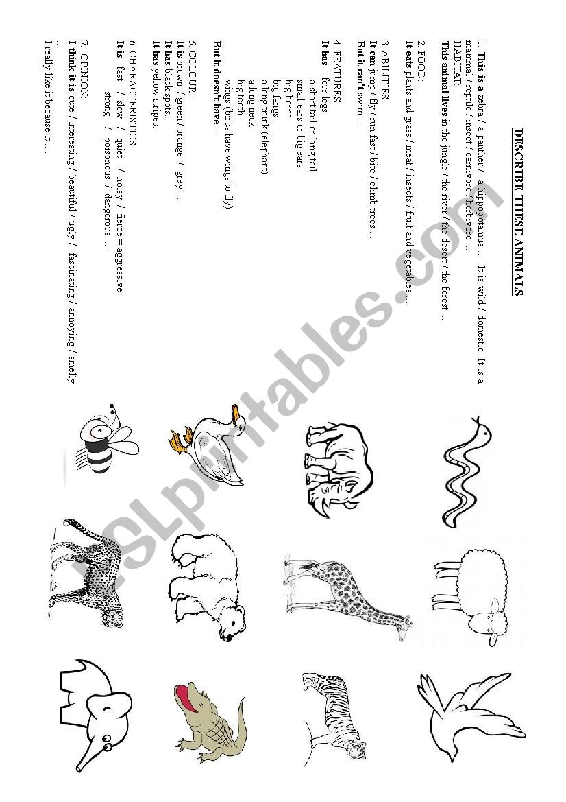 DESCRIBING ANIMALS worksheet