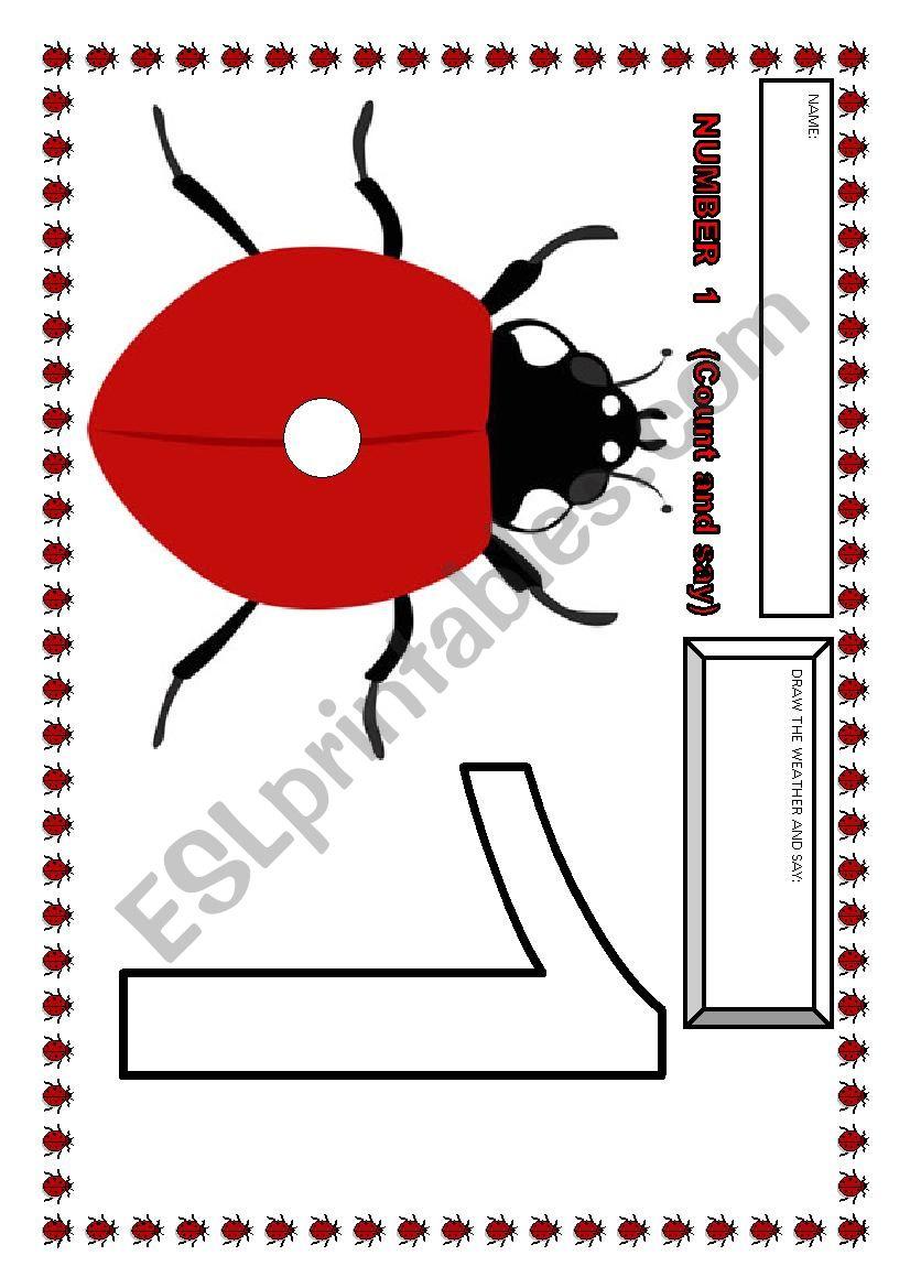 Ladybug numbers-FLASHCARDS  worksheet