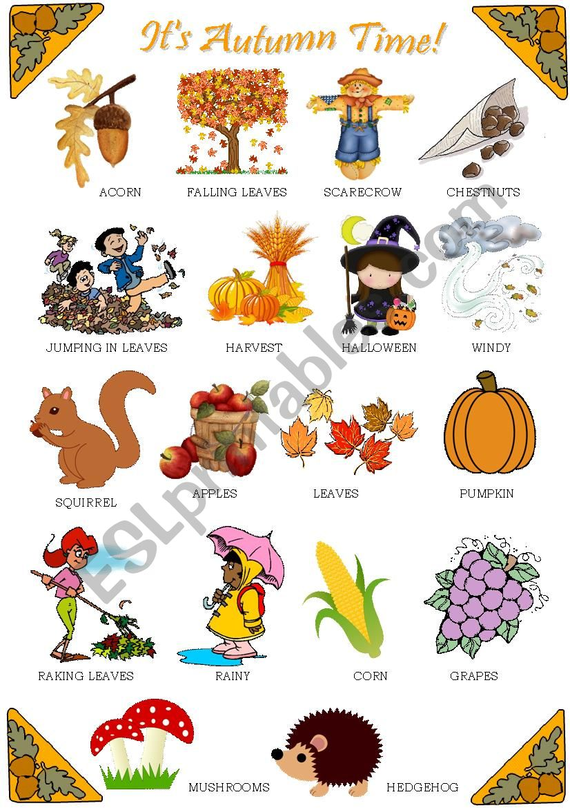 Autumn - Pictionary worksheet