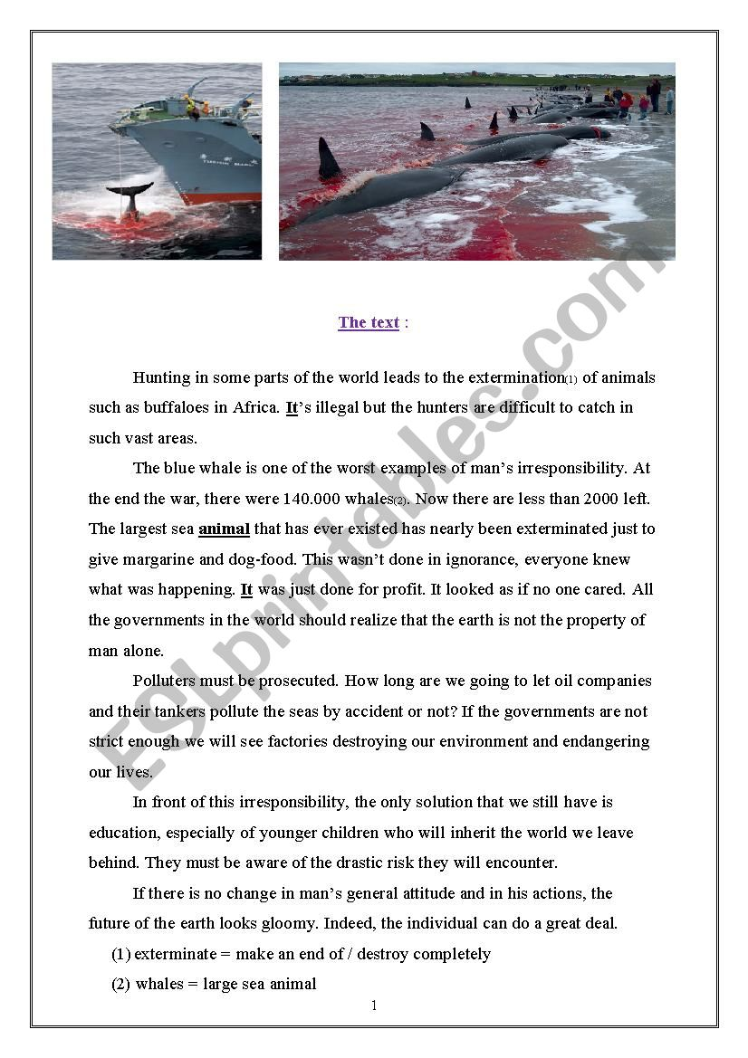 Hunting Blue Whales (Full term 3 test 9th Forms Tunisia)