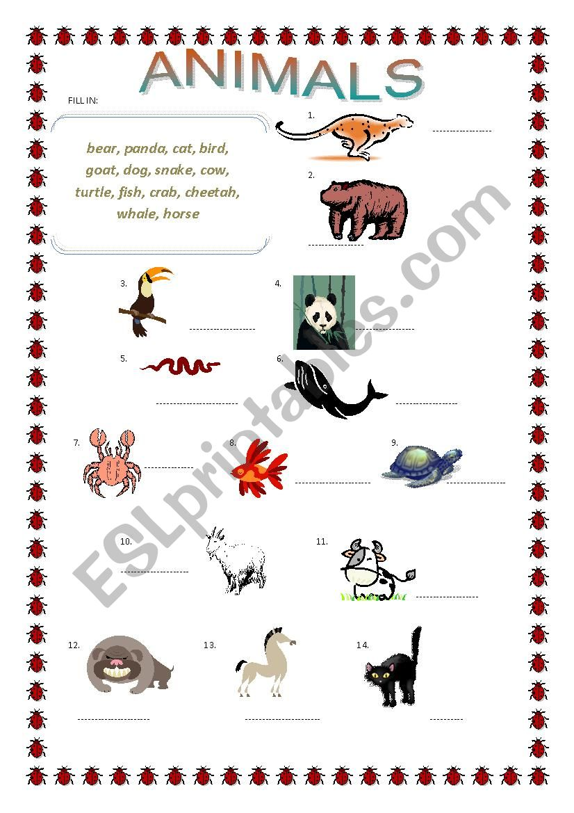 Animals matching, superlative adjectives crossword 2 pages