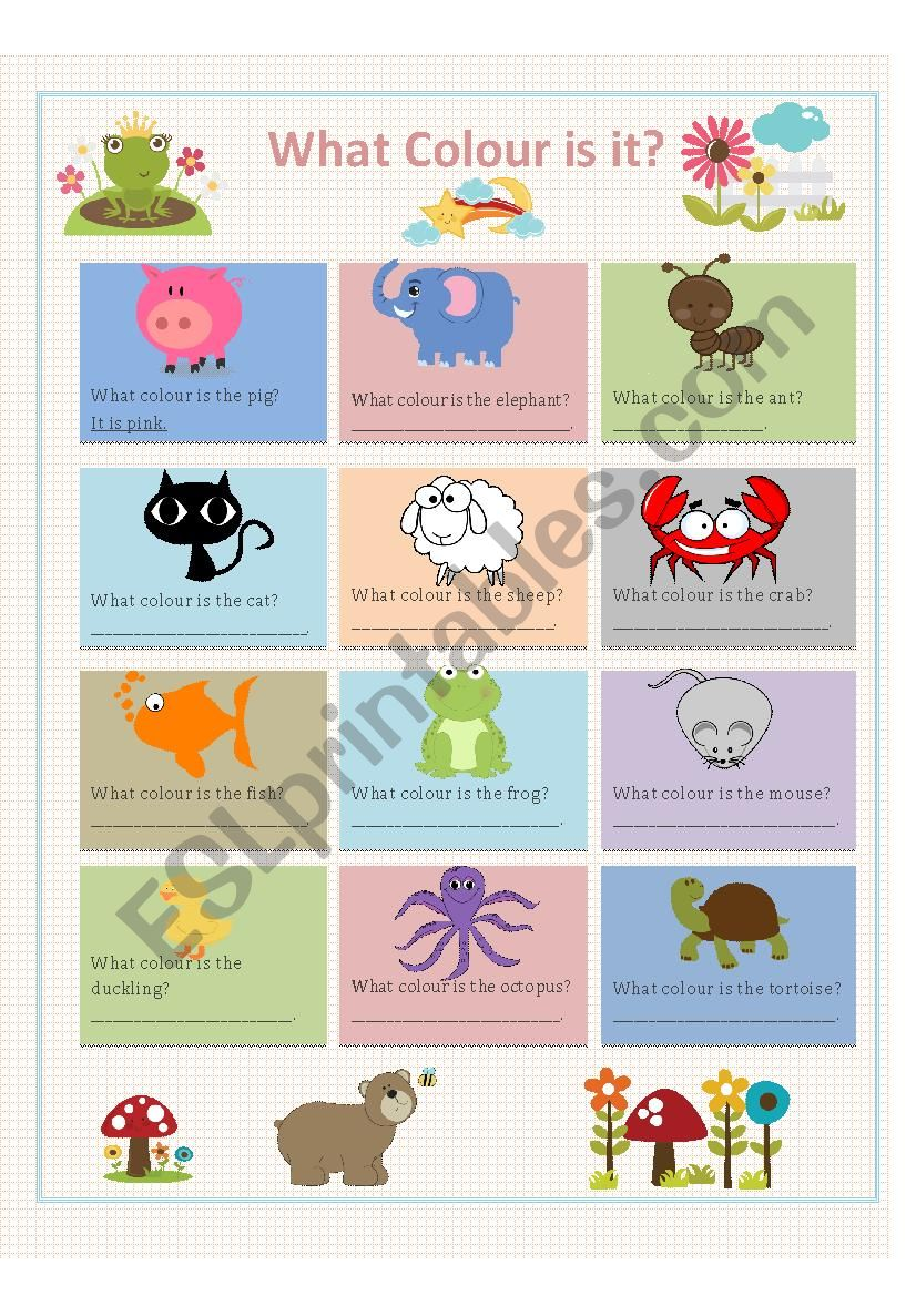 Colours and Animals worksheet