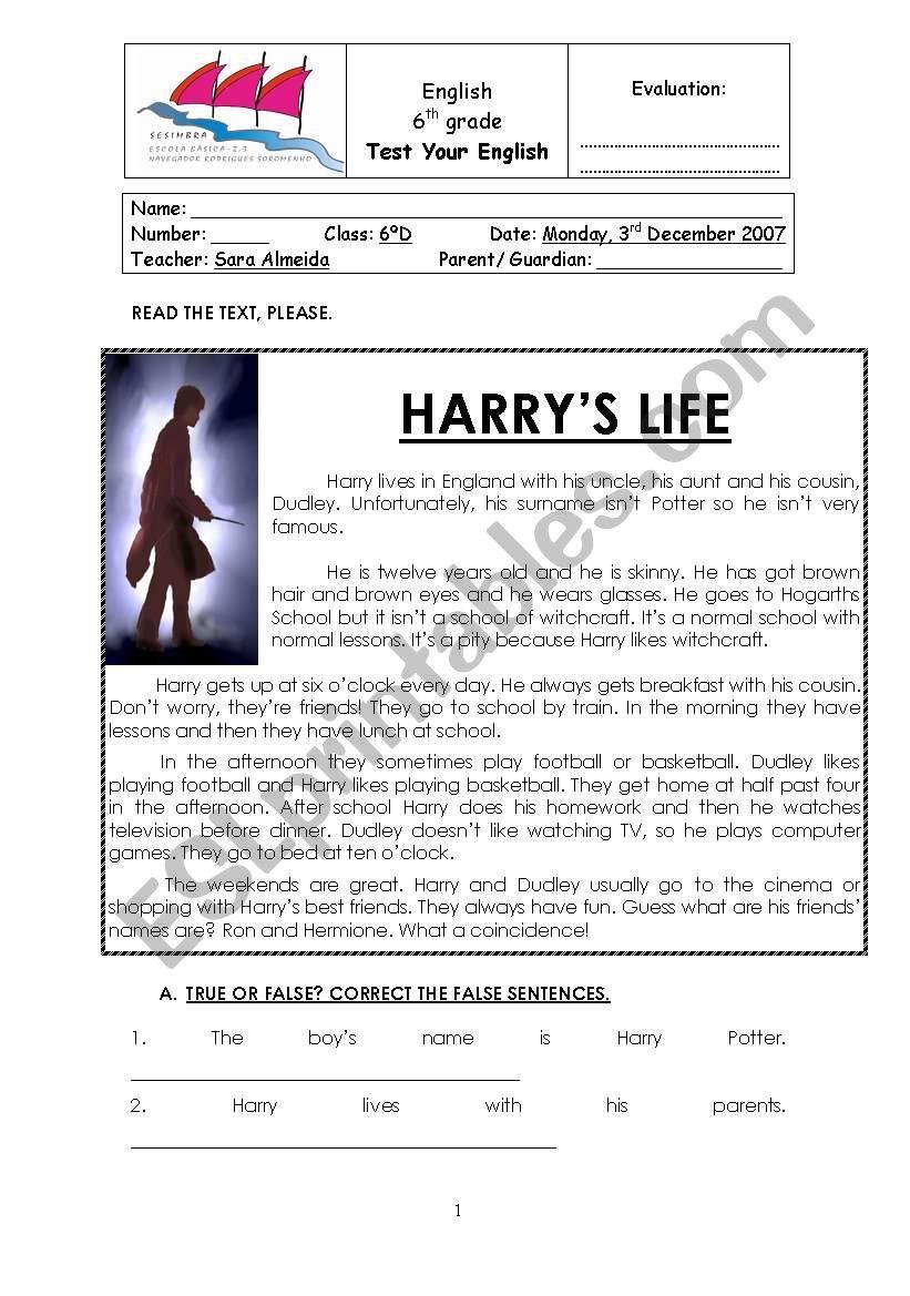 harry potter test worksheet