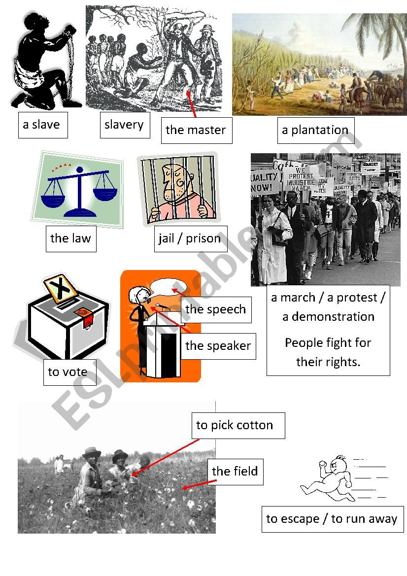 vocabulay to introduce a lesson about slavery